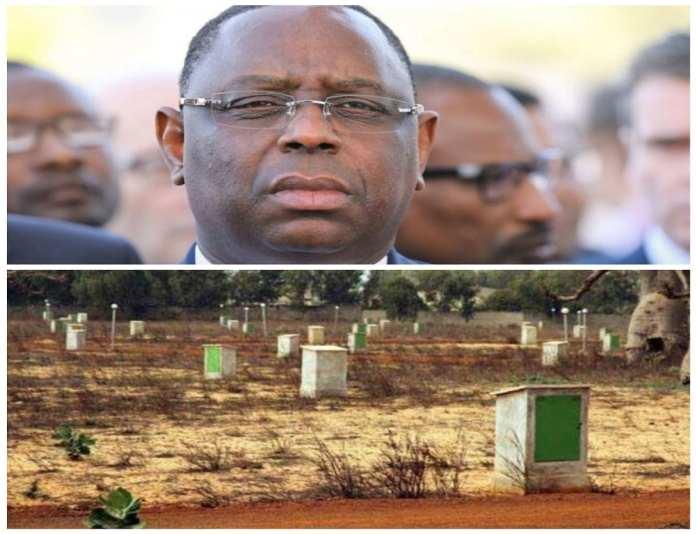 Litiges fonciers au Sénégal - inCollage_Kafunel.com