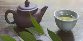 thé vert aide à réduire le taux de lipides dans le sang et la raideur du foie,