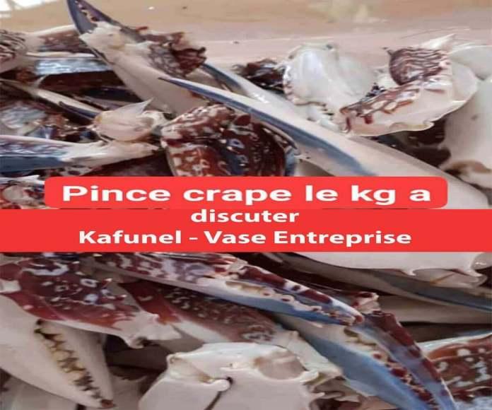 Pince Carpe