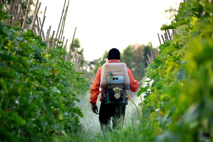 arretes-anti-pesticides