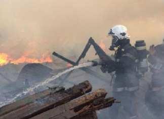 les-sapeurs-pompiers-au-chevet-de-parc-lambaye-en-feu-au-coeur-de-dakar