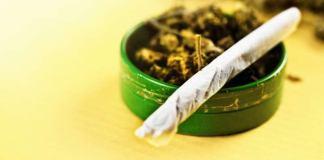 Addictions ados européens alerte sur le cannabis, l'alcool et le tabac en baisse
