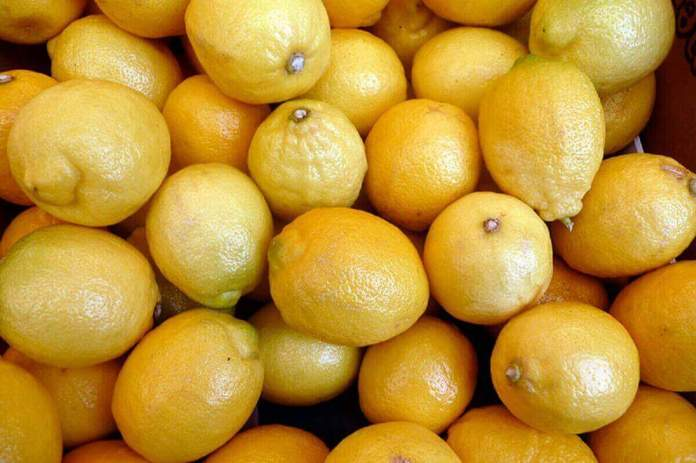 Citrons vrac - kafunel.com - histoire