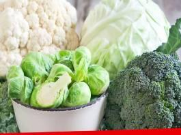 Assiette Anti Âge 10 Conseils Pour Bien Vieillir