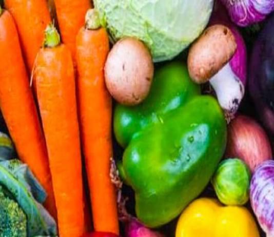 presence-de-salmonelles-dans-les-legumes-au-niveau-des-marches-dans-la-zone-des-niayes-et-dakar-etude