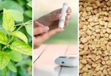 plantes-contre-diabete