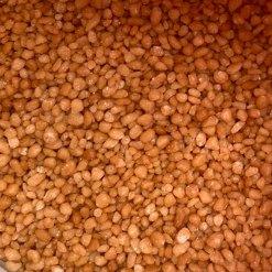Salt Karamel Crunch krymmel 1kg