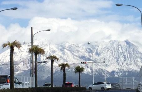 鹿児島に雪が・・・