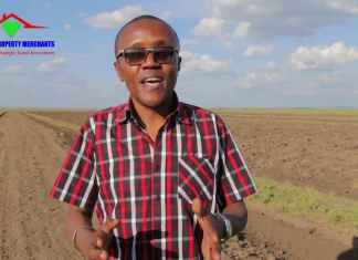 maina kageni, diamond property, nguzo international