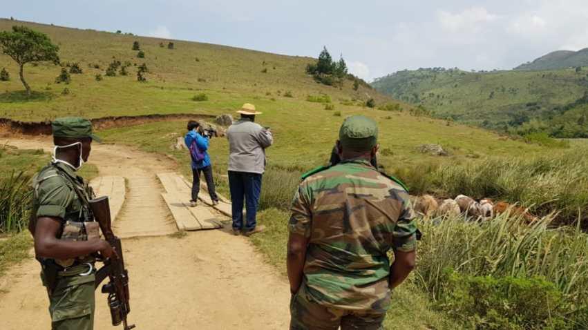 Les deux chercheurs prennent des photos des vaches présentes dans une ferme de la zone tampon, mais hors les limites du parc.