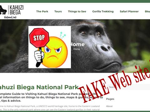 Image de l'entête du faux site de Kahuzi-Biega