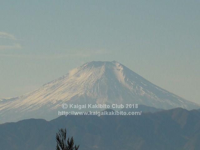 景信山から見る富士山