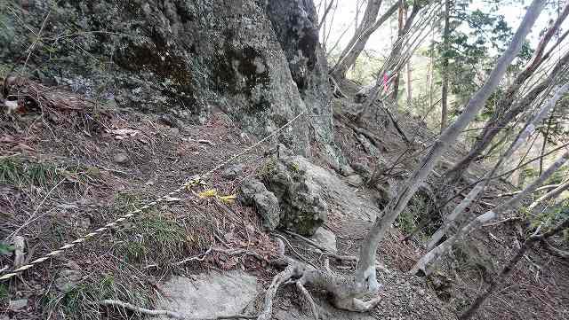 御前山への登山道
