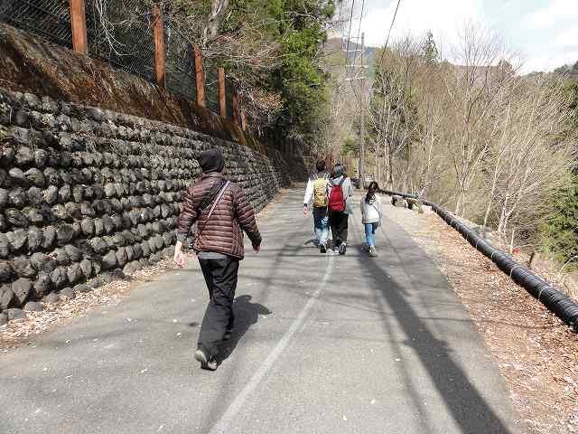 寸又峡「夢の吊り橋」への道