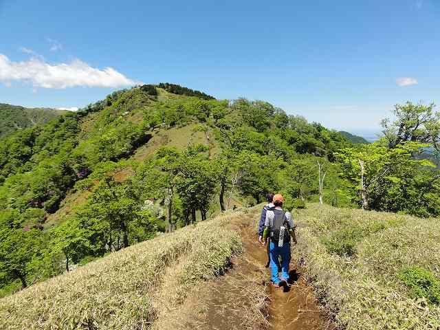 塔ノ岳から丹沢山への尾根筋