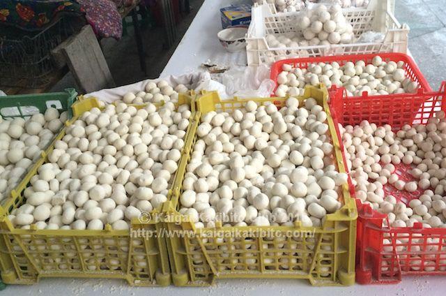 トルクメニスタンの干しヨーグルト「グルト」