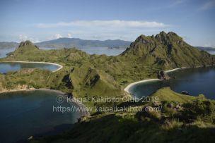 インドネシアのコモド島