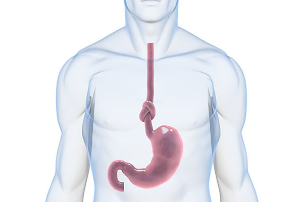 Symptoms of Gastrointestinal Disorders