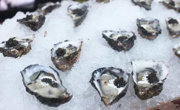 LAFW Oysters