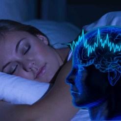 Beberapa Pekerjaan Otak Saat Kita Tertidur Lelap