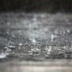 雨の日の出張買取
