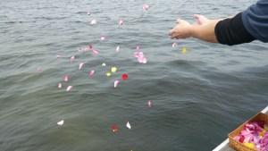 海への散骨時の献花