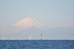 東京海洋散骨と富士山