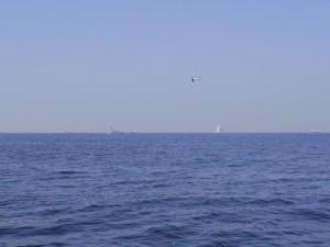 海ほたる沖合での散骨