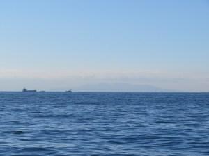 大島の見える海洋散骨