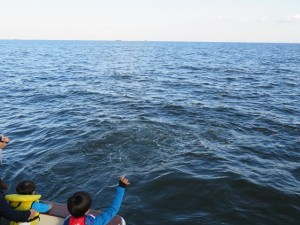 小さなお子様も乗船できる海洋散骨