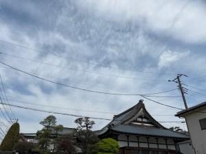 東京都のお墓じまいと海洋散骨
