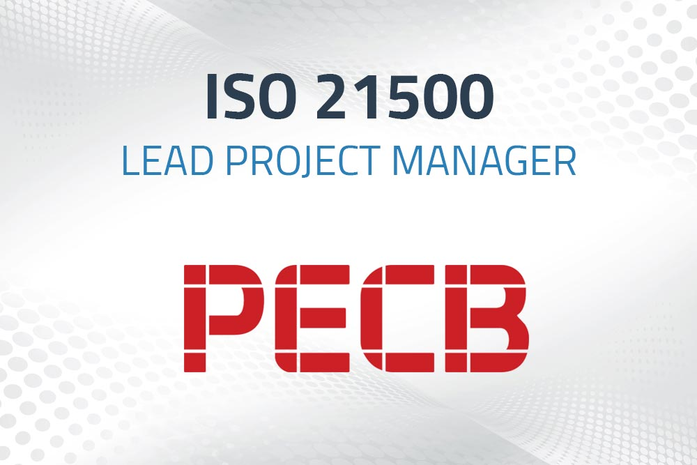 iso 25100 lead project managment