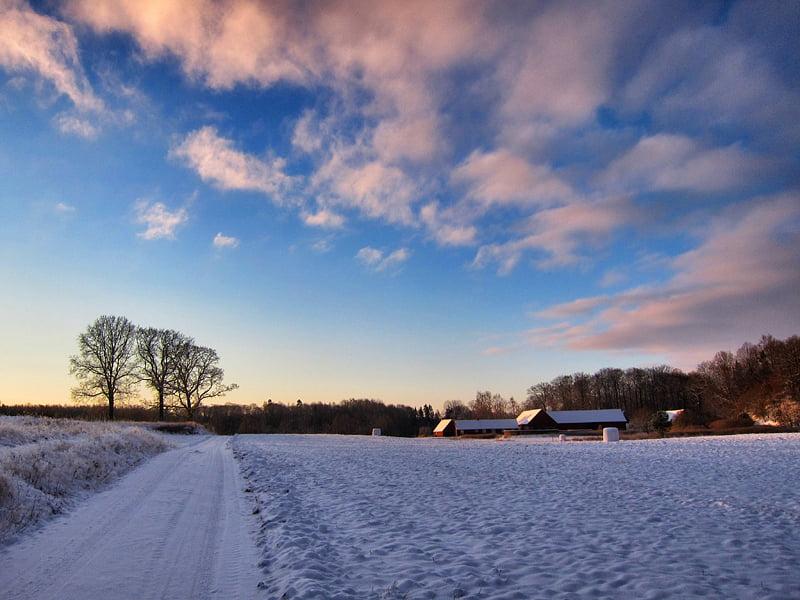 Vinter hemomkring