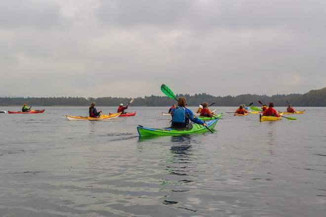 Många kajaker på sjön
