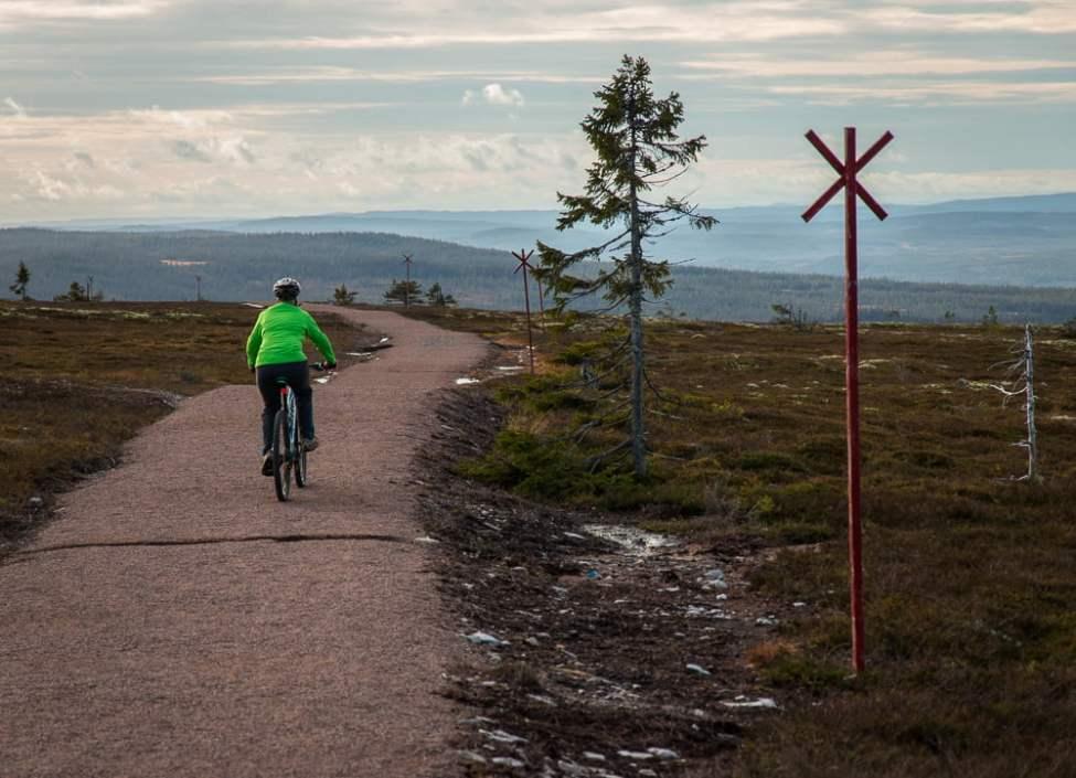 Cykelgrusväg över lågfjället
