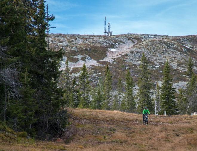 Ensamma i slalombackarna
