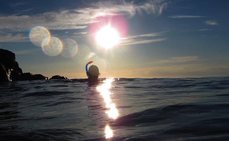 Snorkeldags vid hallarna. Snorkling är ett fint sätt att uppleva naturen under ytan