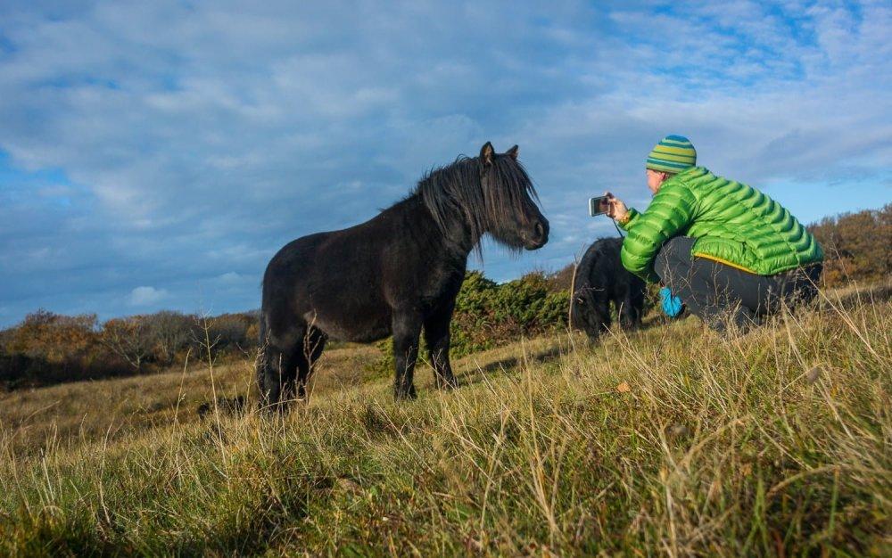 Pia pratar med, och fotograferar, djuren