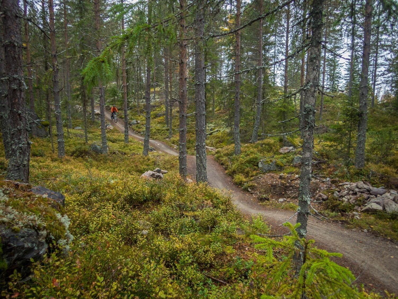Norska cykelstigarna slingrar sig ungefär som norska vägarna. Kul!