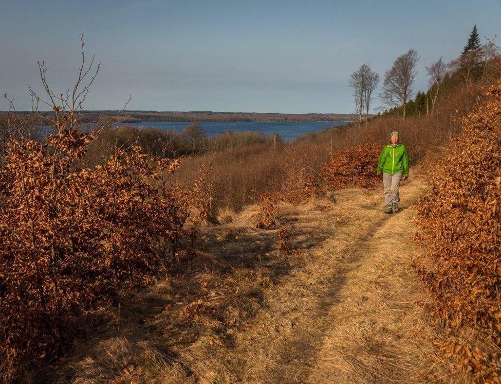 Göttiga promenadstigar (och cykelstigar) med vy över Västersjön (& Rössjön på andra hållet)