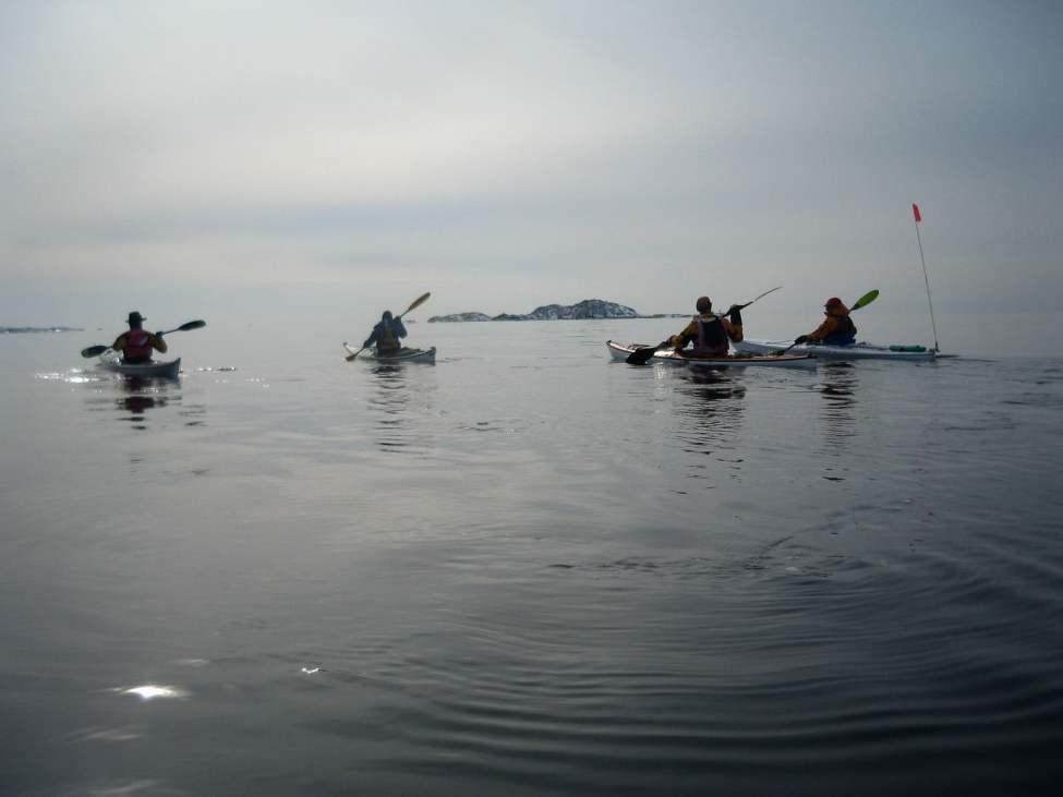 Riktigt go paddling söderut
