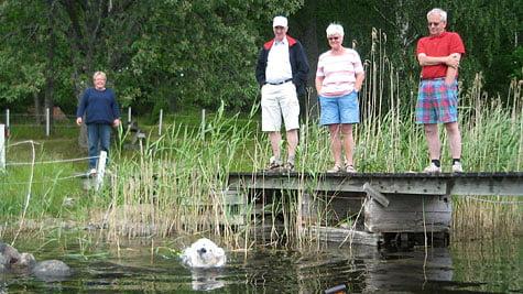 Marianne, pappa, mamma, Bosse. I vattnet Stina (golden)