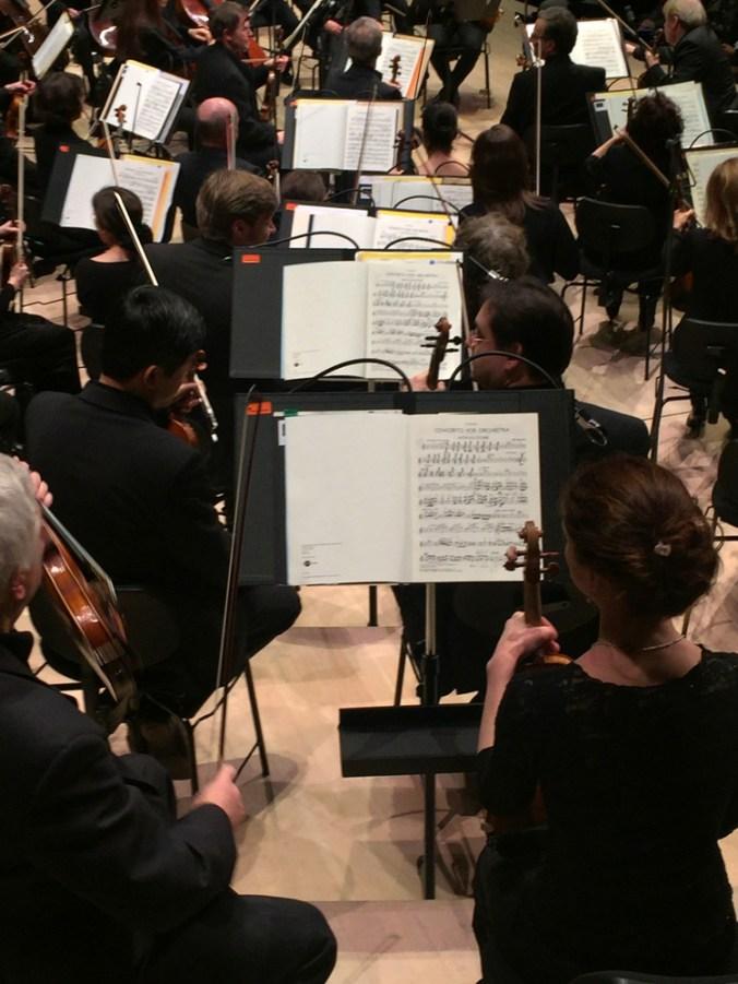 Elbphilharmonie Orchester Violinen kakakiri