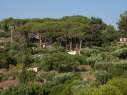 Blick auf Casa Cucinone