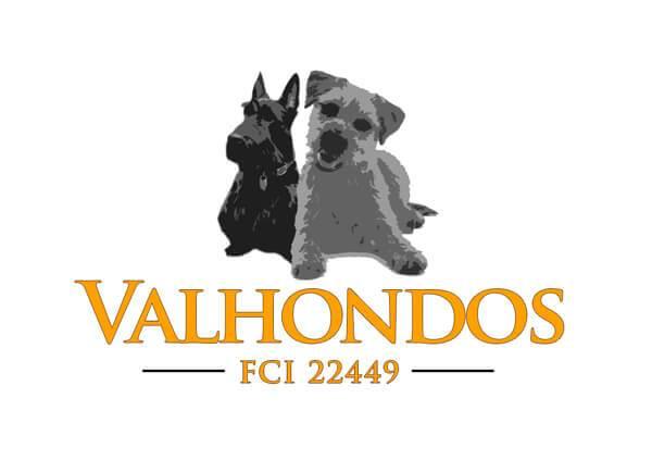 Logo Valhondos