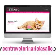 Página web de Veterinaria La Salle
