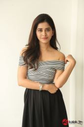 Actress Nabha Natesh Photos (11)