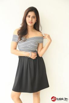 Actress Nabha Natesh Photos (6)