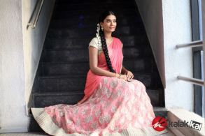 Actress SS Tanvi Photo Shoot Stills (4)