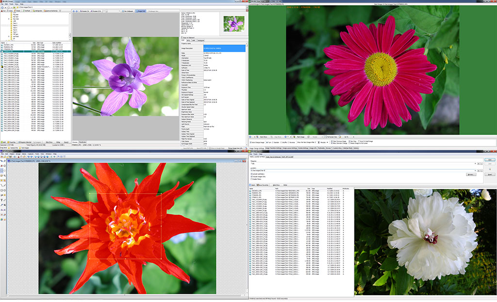 Снимка: WildBit Viewer 6.4 Final